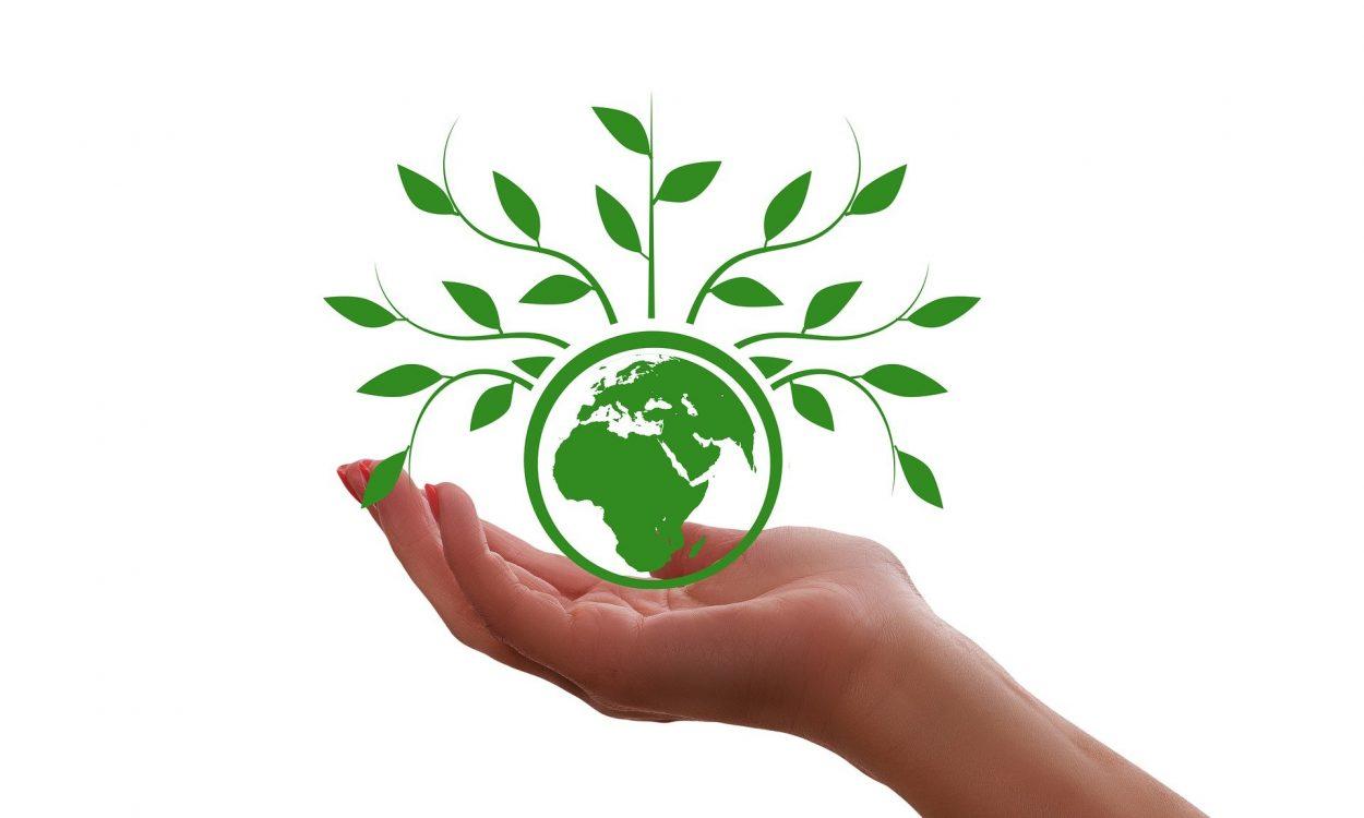 Main tendue tenant une icône verte représentant la terre et des branches d'arbres